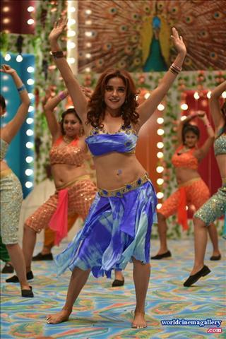 Balakrishnudu movie pia bajpai item song stills altavistaventures Choice Image
